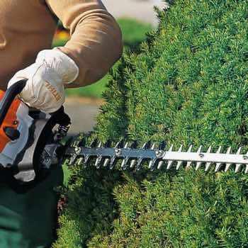 Garden Clearance & Maintenance 66
